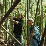 Atsuya Okuda and Jean Mihell harvesting bamboo in Nagano