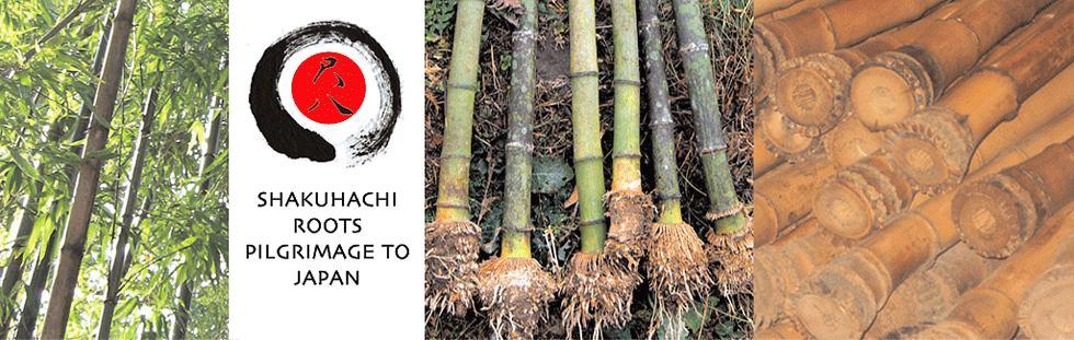 Shakuhachi Roots